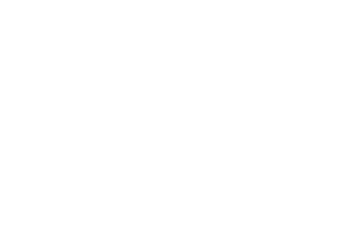 Parkes Shire Council - w logo